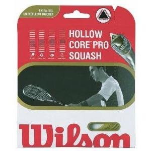 Струны для ракетки Wilson Hollow Core Pro 17 купить