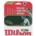 Wilson Hollow Core Pro 17
