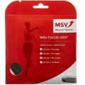 MSV Focus Hex