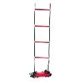 Wilson Ladder